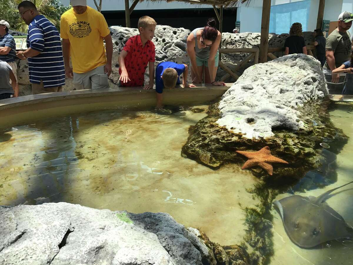Caribbean Journey opened at the Texas State Aquarium in Corpus Christi May 13, 2017.