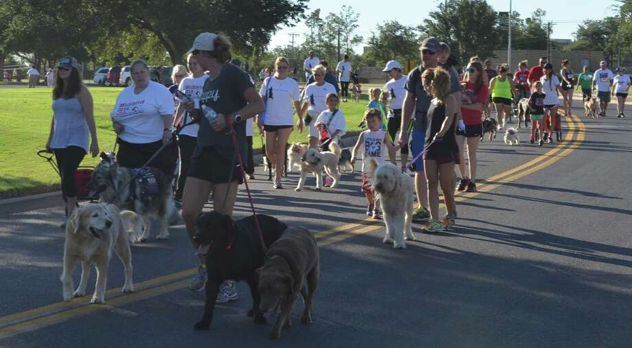 MHC's third annual Hot Dog Run 5K and 1K is June 24 at Midland College. This year, though, the run will be more like a festival. Photo: Courtesy Photos
