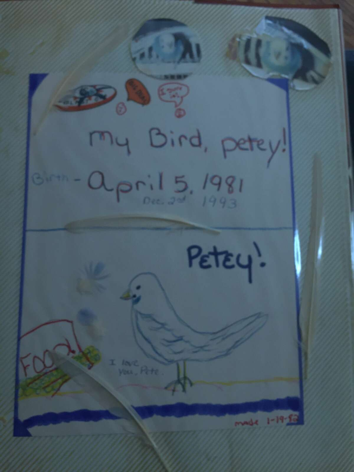 1. Growing up, I had a parakeet named Petey who lived 12 years. I put my initials on his egg when I was 10. He died when I was 22. That was my first heartbreak.