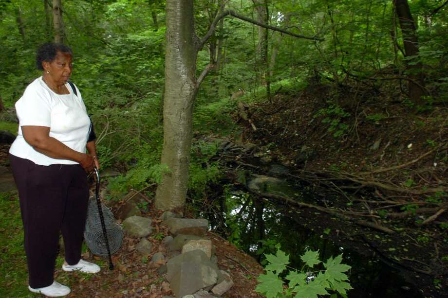 Helen Jones stands near the brook that runs behind her home on Valley Ave., in Bridgeport, Conn. June 9th, 2010. Jones and her neighbors are concerned about a foul stench comming from the brook recently. Photo: Ned Gerard / Connecticut Post