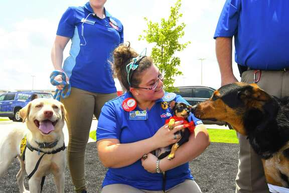 Grand Parkway Marketplace Shopping center at Kuykendahi Rd at Spring Stuebner Rd. Stores like Target , Pet Smart and others stores. Grand opening  celebration 06/09/2017  (Caption ) Allison Harp of Pet Smart helped in   dog and cat  adoption .at the Grand Parkway Marketplace grand opening