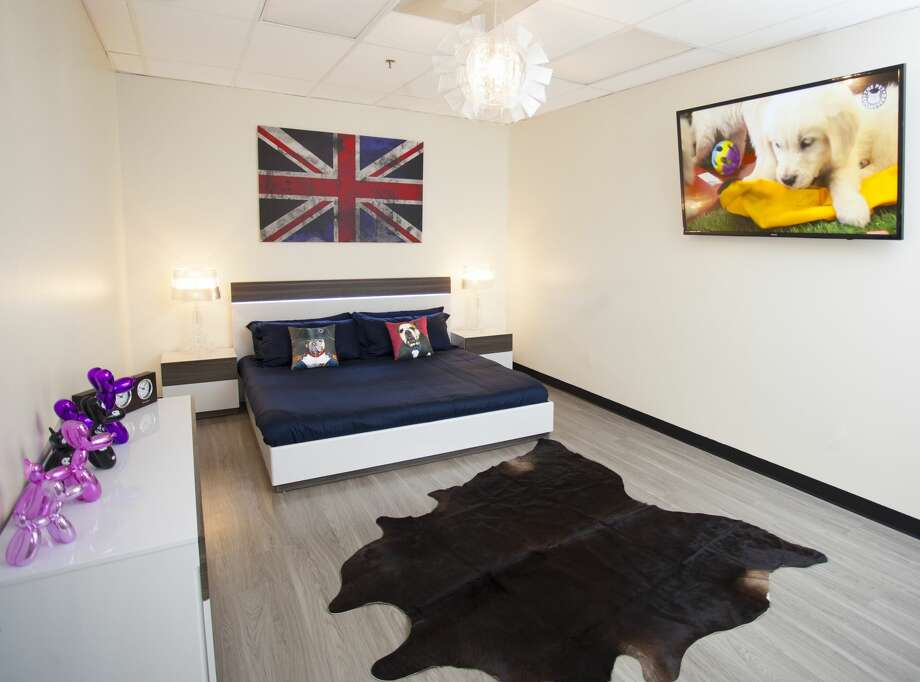 Photos inside the luxury central texas pet hotel that for Dog hotels los angeles