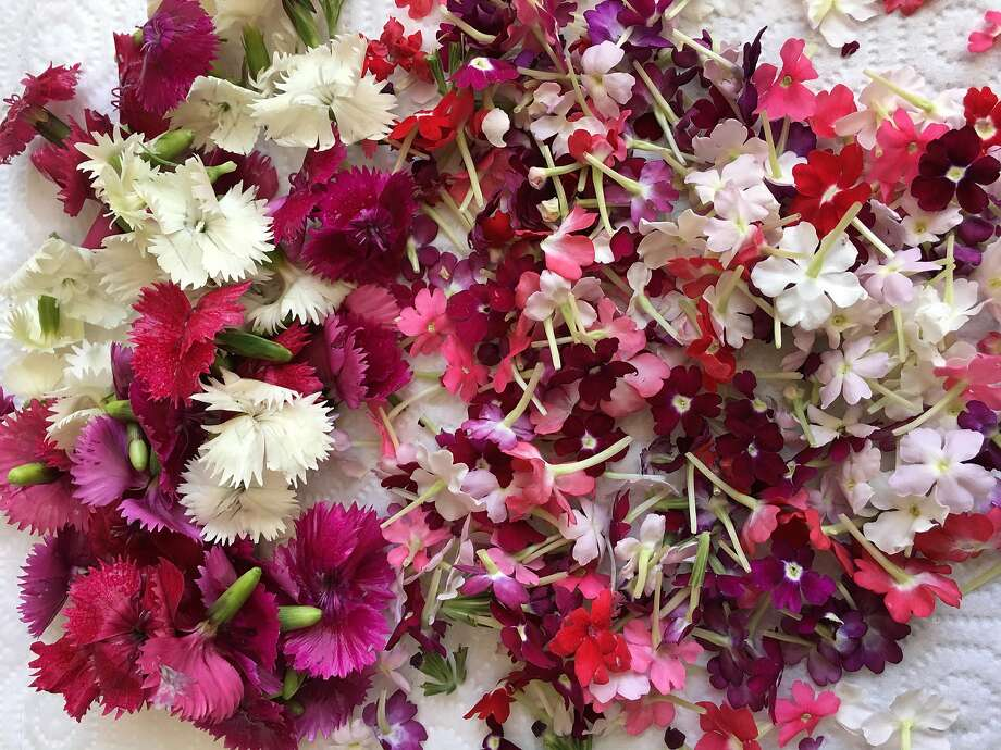 Edible flowers, such as dyanthus and Star Flowers, grown by Marin Roots Farm. Photo: Sarah Fritsche