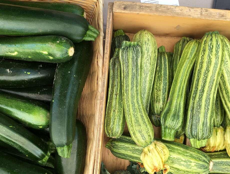 Healthy summer squash. Photo: Sarah Fritsche