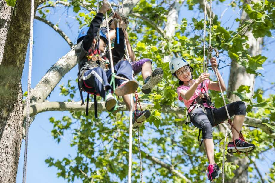 Viktor Pangburn, 9, of Larkin Township and Megumi Togashi, 12, of Midland explore the canopy during a tree climbing course at Dow Gardens on Tuesday, June 20, 2017. Photo: Danielle McGrew Tenbusch, Danielle McGrew Tenbusch | For The Daily News