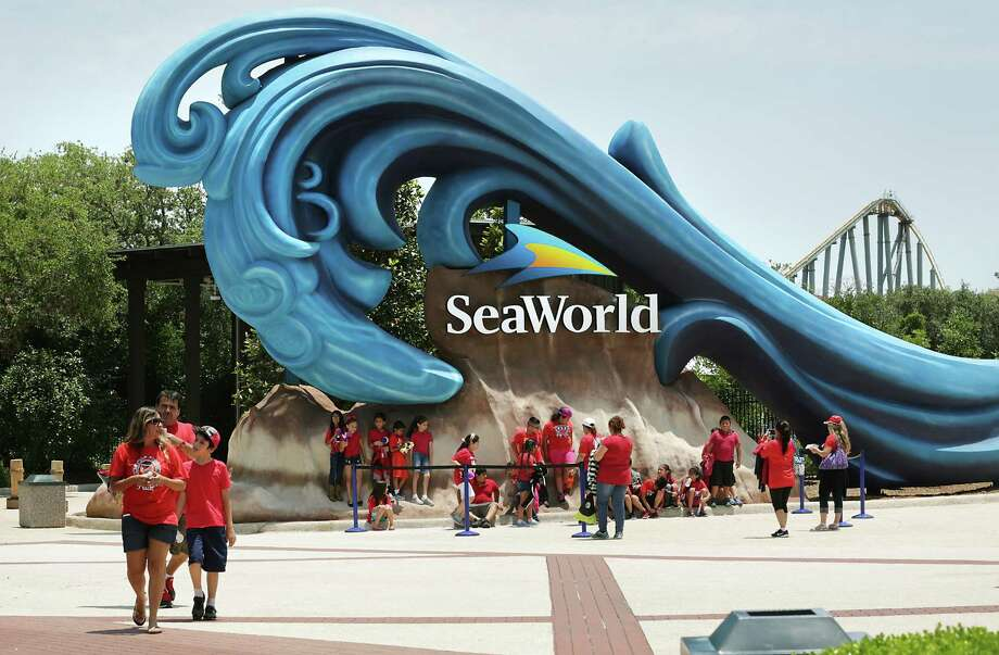 A blogger has reported Six Flags Entertainment is in talks to buy all or some of SeaWorld Entertainment's parks — a portfolio that includes properties in Orlando, San Antonio and San Diego. Photo: Bob Owen /San Antonio Express-News / ©2016 San Antonio Express-News