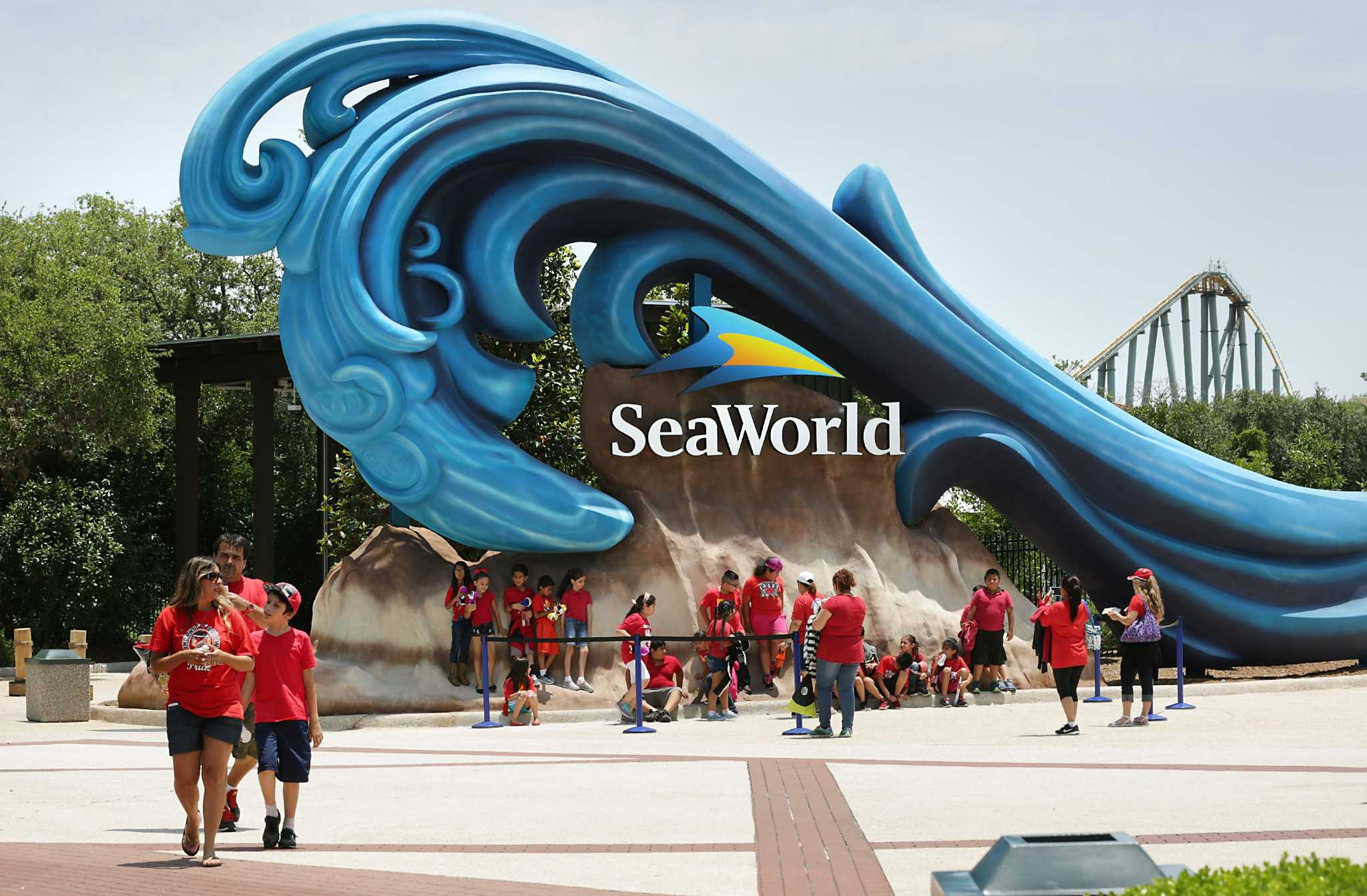 SeaWorld San Antonio addresses report saying park trains marine mammals for 'circus-like' shows