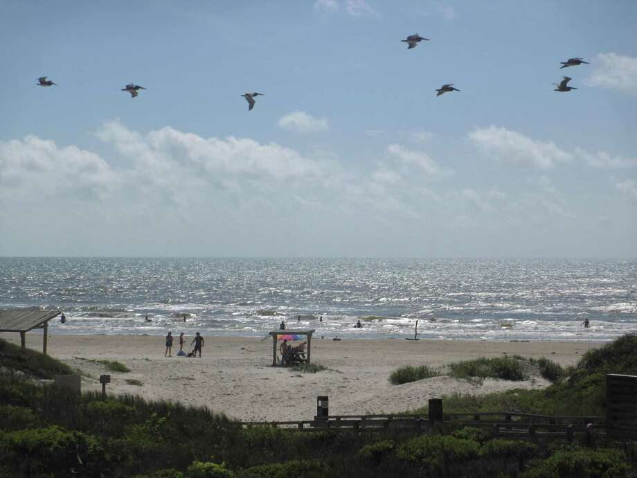 A 60-year-old New Braunfels man was found dead on Friday, Dec. 29, 2017 at Padre Island National Seashore Photo: Terry Scott Bertling / San Antonio Express-News