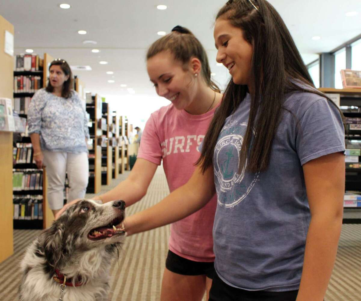 Claire Meany (right) and Caroline Hess (middle) take a break from studying to pet Rooney, a therapy dog from Ridgefield Operation for Animal Rescue, at Wilton Library on Tuesday, June 20, 2017.