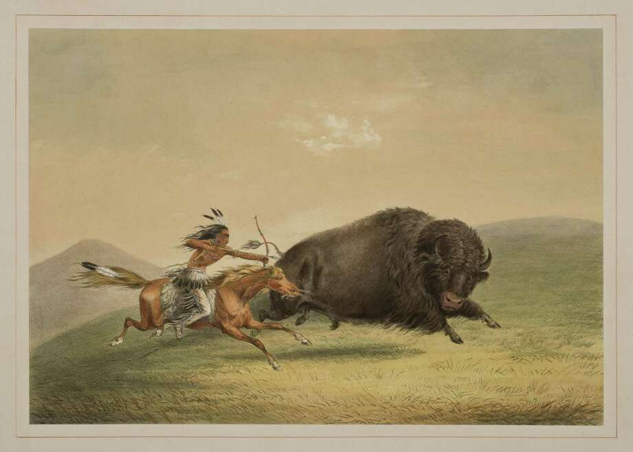 "George Catlin's ""Buffalo Hunt Chase"" is part of a rare set of prints that will be exhibited at the Briscoe Western Art Museum. Photo: Courtesy Of The Briscoe Western Art Museum"