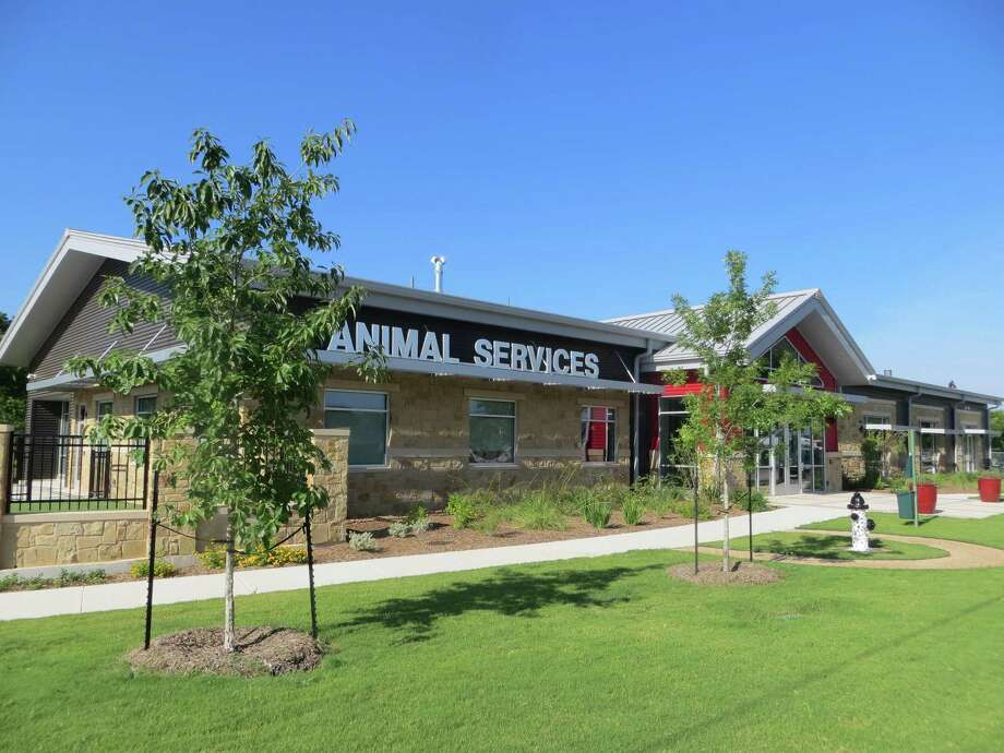 Employees of Seguin's animal services department say they can't wait to relocate from their outdated facilities between the municipal sewage treatment plant and Riverside Cemetery at the end of South River Street to these state-of-the-art new quarters on Fred Byrd Drive, set to open officially July 10. Photo: Zeke MacCormack /San Antonio Express-News