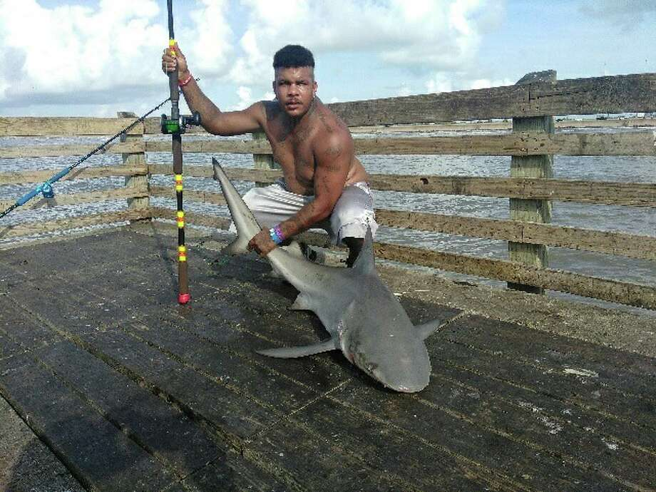 Anglers snare sharks other big catches at galveston for Galveston pier fishing