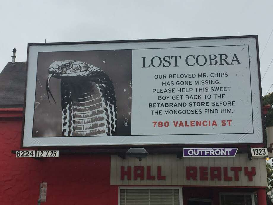 S.F.-based clothing store BetaBrand placed nine lost-cobra billboards around town in June 2017 as a marketing stunt. Photo: Twitter Screen Grab