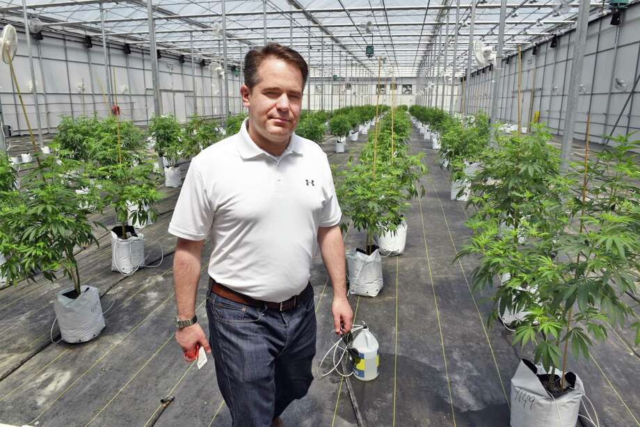 Vireo Health's CEO Ari Hoffnung in the new greenhouse at their medical marijuana cultivation and manufacturing facility Tryon Technology Park Wednesday June 21, 2017 in Johnstown, NY.  (John Carl D'Annibale / Times Union) Photo: John Carl D'Annibale / 20040800A