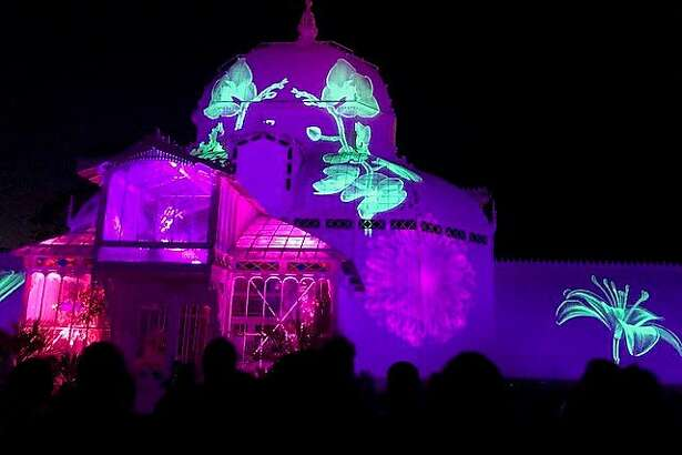 San Francisco Conservatory during Obscura light show, June 21, 2017