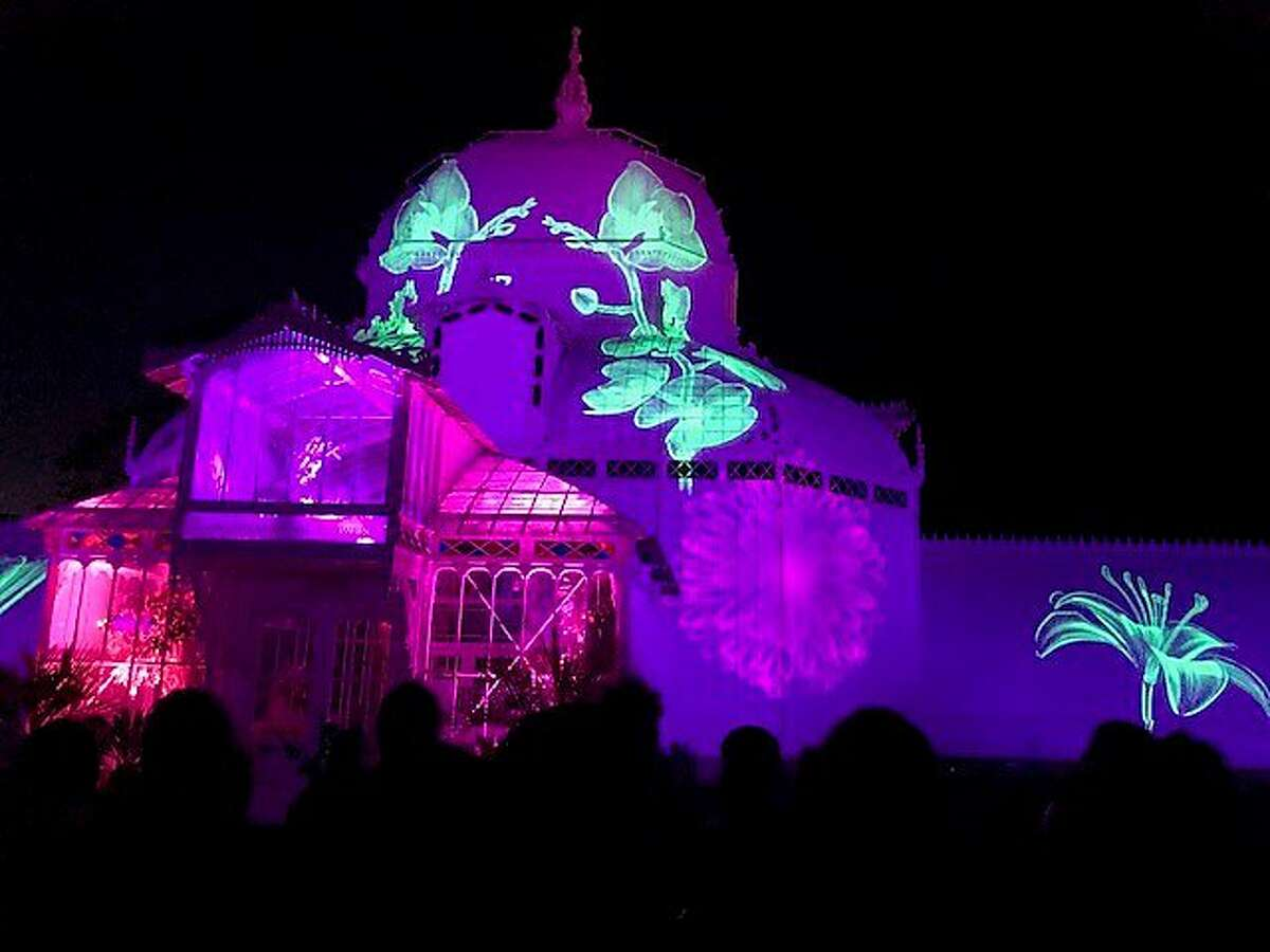 San Francisco Conservatory during Obscura light show celebrating 50th anniversary of Summer of Love