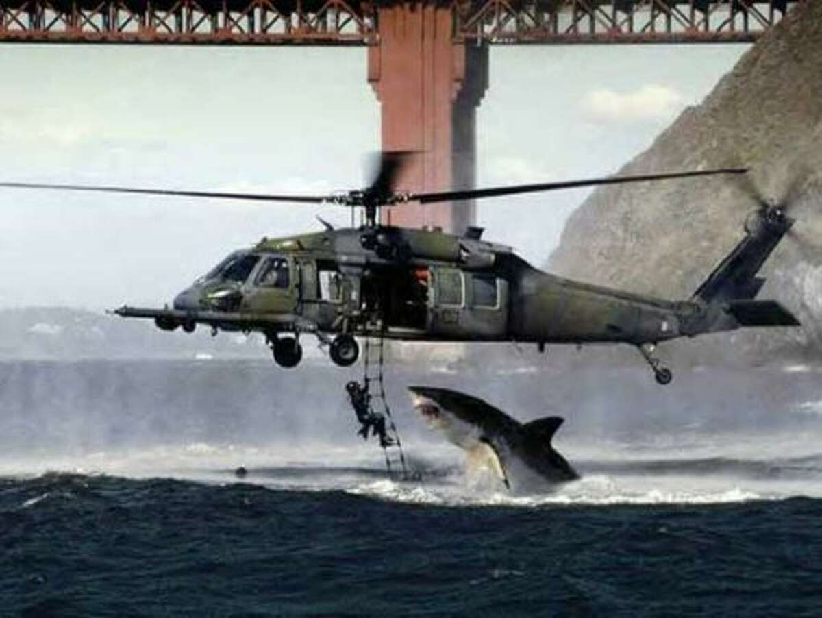 Helicopter shark The Golden Gate Bridge served as the perfect backdrop for a dramatic-yet-fake photo that circulated online in 2005. An Air Force helicopter is seen hovering over the water while being attacked by a great white shark. The photo was forwarded in an email claiming it had
