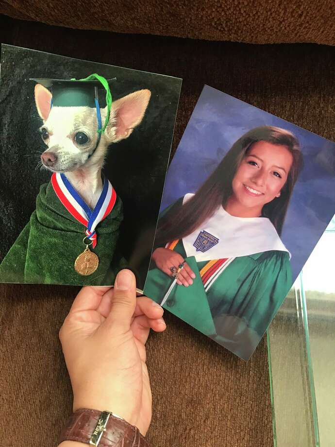 """""""I've been recreating family pictures with my dog and slowly replacing them around the house to see if my mom would notice. She wasn't amused,"""" Marissa Hooper tweeted on June 17, 2017, causing a viral reaction. Photo: Courtesy, Marissa Hooper"""