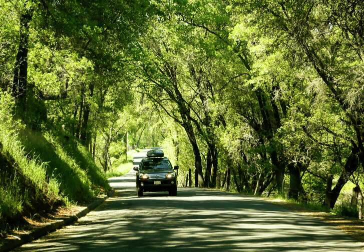 Six Mile Road in the heart of Gold Country provides a scenic drive through a canopy of trees in the town of Murphys, Calif., on May 2, 2017. (Mark Boster/Los Angeles Times/TNS)