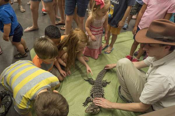 Seth Poyfair, with Repco Wildlife out of the Houston area, shows off a male Tegu lizard 6/23/17 at the wildlife encounter at Midland County Library Centennial branch. Tim Fischer/Reporter-Telegram