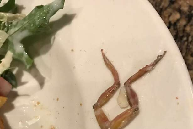 A California woman found a dead frog in her salad at a BJ's Restaurant and Brewhouse.