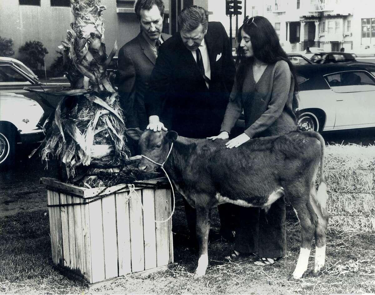 Bonnie Ora Sherk and Howard Levine,