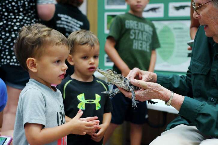 Brady and Blake Maxheimer check out a baby alligator during a Texas master naturalist presentation at the Pearland Library. Local libraries are staging special summer events in addition to reading programs.