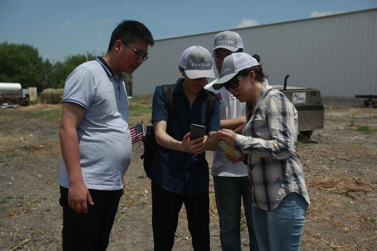 Song Qun, explains to his colleagues how the sorghum is harvested using the big tractor at the Chopelas Farms.