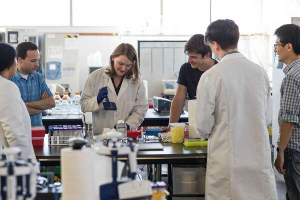Research and development staff at Hampton Creek (left to right): Aparna Subramanian, Eitan Fischer, Olga Gasiorowska, CEO and founder Josh Tetrick, David Bowman (back to camera) and Chingyao Yang.