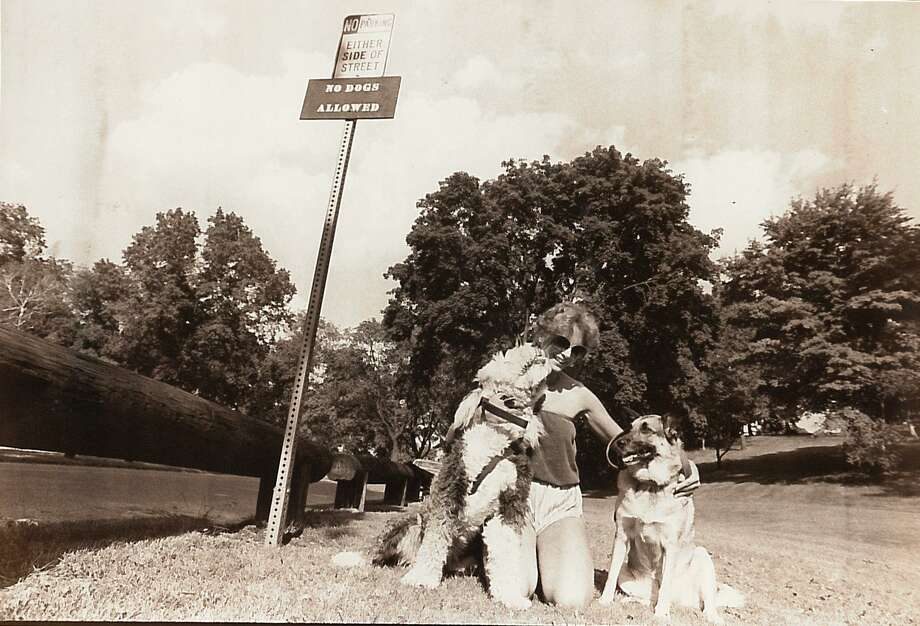 Beatrice Lomrento, with her two dogs Dylan, left, and Jessica, complains about a new regulation that prohibited dogs in Byram Park on June 20, 1984. Photo: Mel Greer /