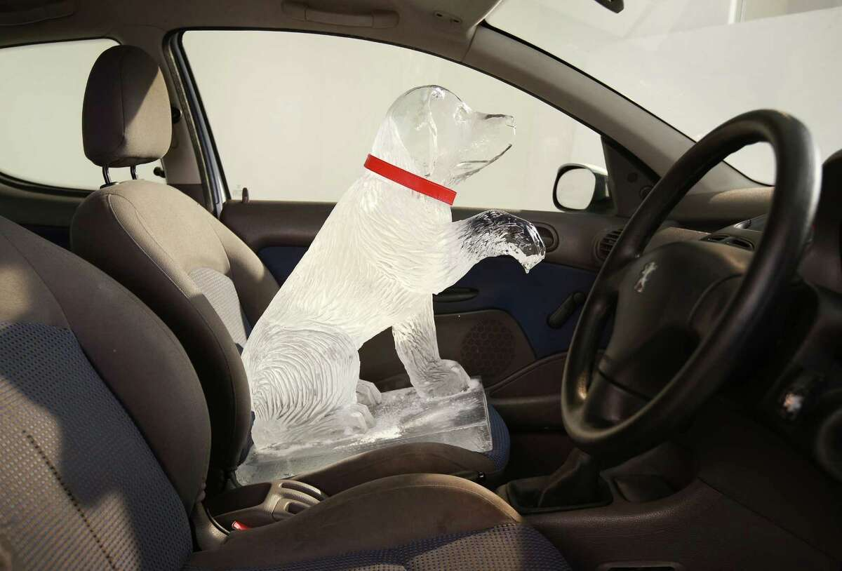 Even a dog made of ice shouldn't be left alone in a car.LONDON, ENGLAND - APRIL 09: An ice sculpture is placed in a vehicle to warn of the dangers of leaving a dog in a hot car on April 9, 2014 in London, England. Today Dogs Trust unveils its summer campaign to highlight the true cost of only '20 minutes', the time it can take for a dog to die in a hot car.
