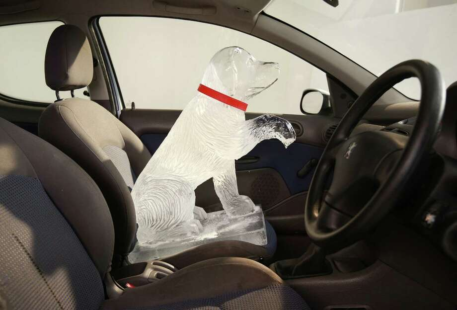 Even a dog made of ice shouldn't be left alone in a car.LONDON, ENGLAND - APRIL 09: An ice sculpture is placed in a vehicle to warn of the dangers of leaving a dog in a hot car on April 9, 2014 in London, England. Today Dogs Trust unveils its summer campaign to highlight the true cost of only '20 minutes', the time it can take for a dog to die in a hot car. Photo: Peter Macdiarmid/Getty Images For Dogs Trust, Staff / 2014 Getty Images