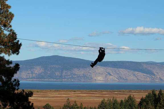 Chronicle outdoors writer Tom Stienstra rides the zipline over a break in the forest canopy with Klamath Lake in the background