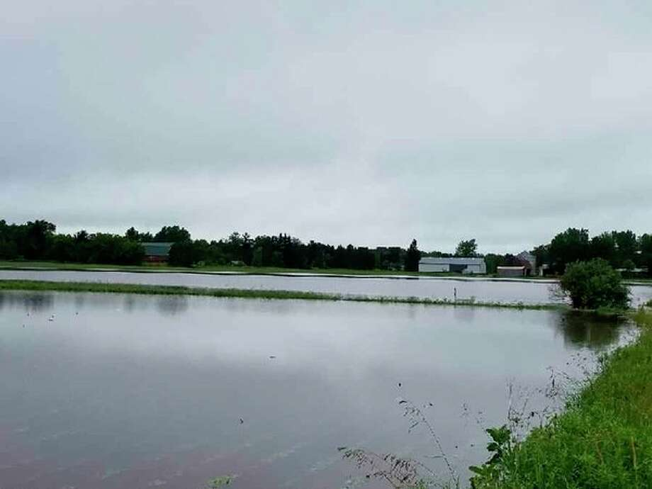 Kevin Draves' fields are completely flooded on Friday morning, June 23, after heavy rains. (Photo provided)