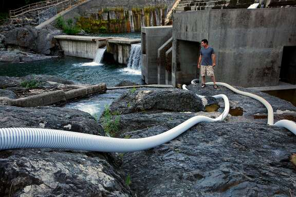 Damon Goodman, fish biologist with the US Fish and Wildlife service  is seen near a system of tubes designed to help the lamprey make their way up the Lake Arsdale Dam along the Ell River on Monday June 26, 2017 in Mendocino County, Ca. The lamprey are unable to make it over the concrete dam using the face of the dam leading biologists to create new ways to assist the lamprey in their migration.