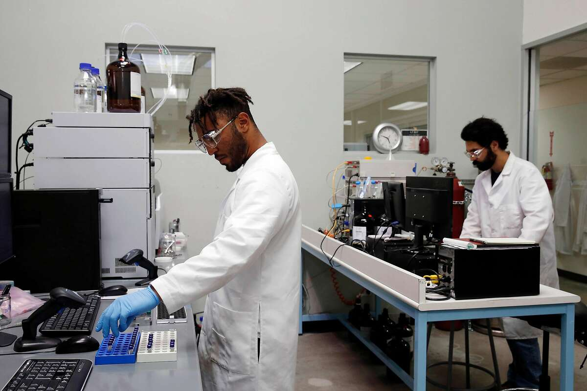 Jibril Kyser (l to r), Steep Hill lab technician/research assistant prepares cannabis samples to put in the Ultra Performance Liquid Chromatography coupled with Mass Spectometry machine (background left) for testing in the chemical testing/safety lab at Steep Hill Labs on Monday, June 26, 2017 in Berkeley, Calif.