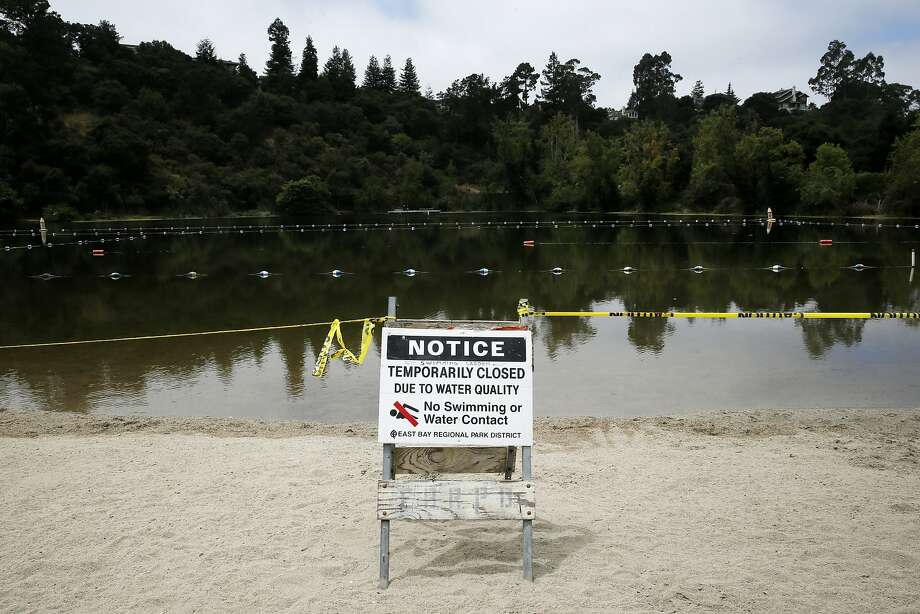 Lake Temescal in Oakland was closed Wednesday because of an outbreak of toxic algae. On Friday, officials in Napa said they were advising swimmers to avoid ponds with similar outbreaks. Photo: Santiago Mejia, The Chronicle