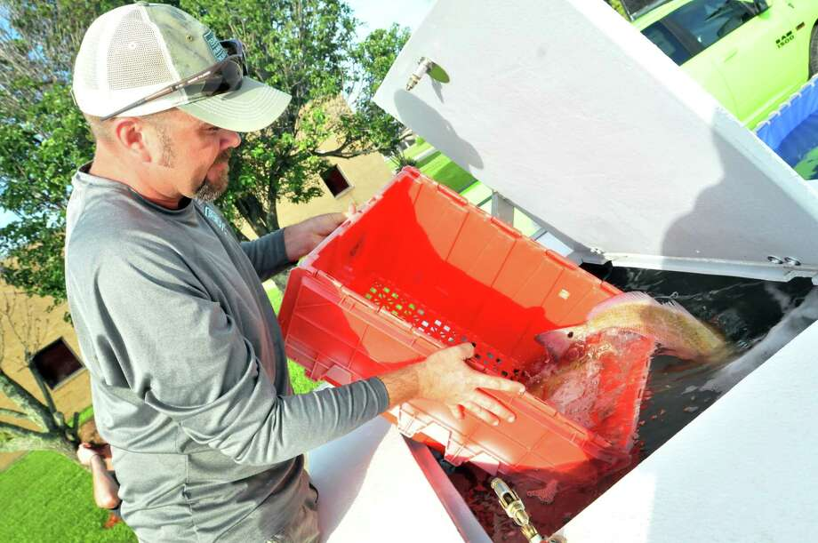 "Texas Parks and Wildlife's Zane Kirsch dumps a container of redfish into the fish hauling unit tank, where it will remain until release after Day 1 of the Elite Redfish Series Border Wars tournament at the Robert A. ""Bob"" Bowers Civic Center in Port Arthur. (Mike Tobias/The Enterprise)"