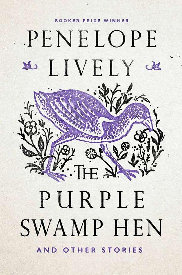 """Purple Swan Hen"" Photo: Viking"