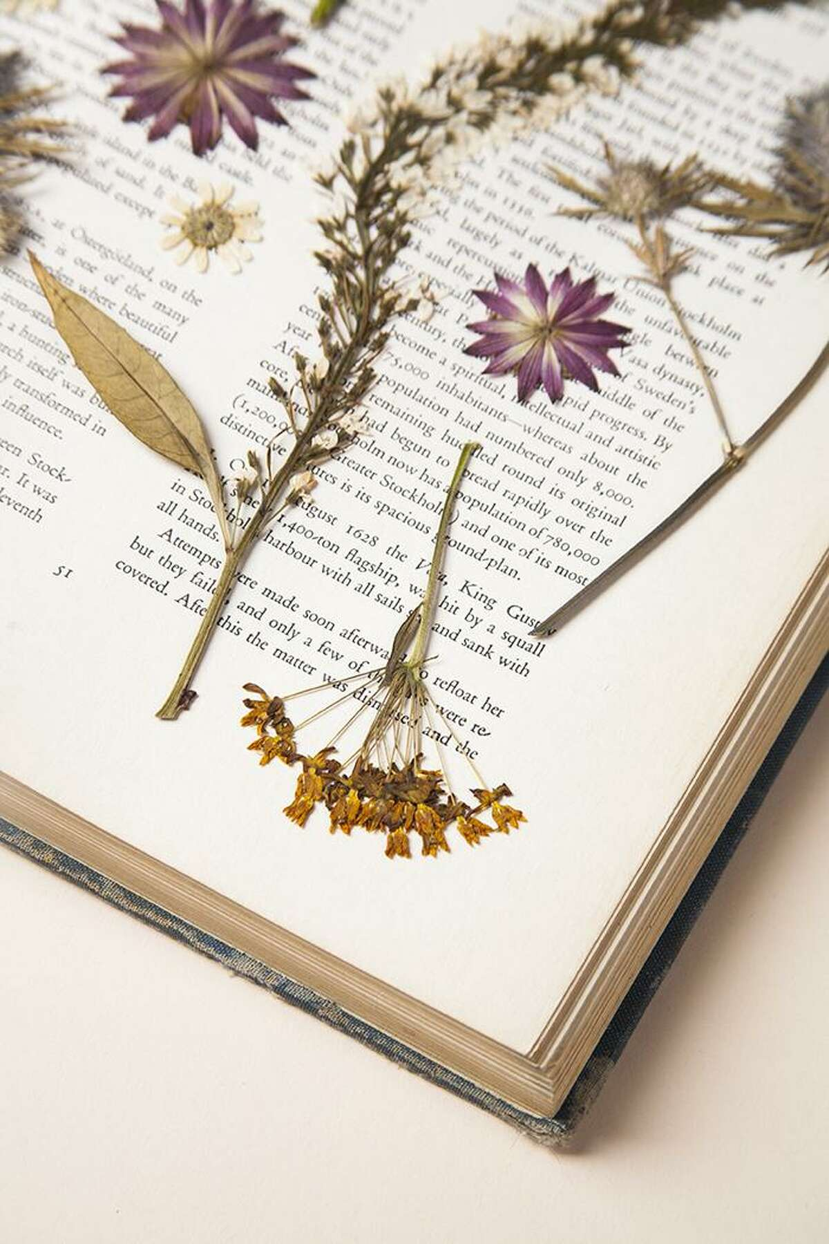 The Wilton Historical Society will host a Pressed Flower Workshop for Kids from 11 a.m. to 12:30 p.m. Saturday, July 15.