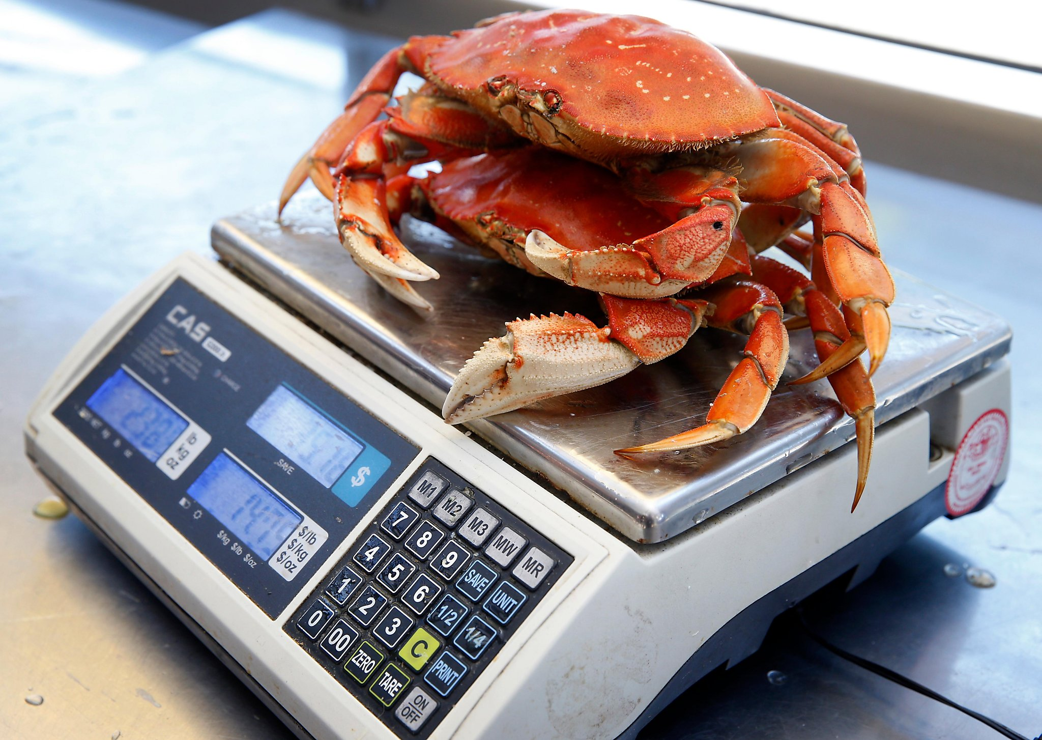 California Dungeness crab industry bounces back with strong