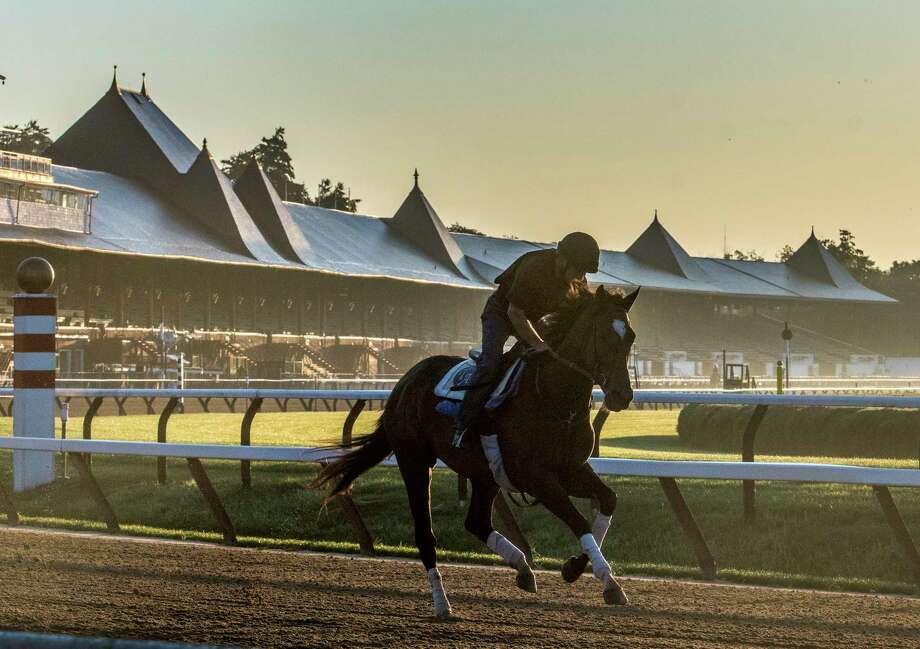 Horses from Tom Albertrani's training stable take to the main track at the Saratoga Race Course for exercise Wednesday July 5, 2017 for the first time since the end of the race meeting last year in Saratoga Springs, N.Y.  (Skip Dickstein/Times Union) Photo: SKIP DICKSTEIN / 20040968A