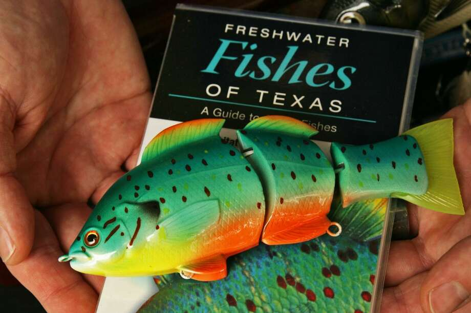 """A hand-painted DuCote Custom Lures orangespotted sunfish lies atop a cover illustration of one on a copy of """"Freshwater Fishes of Texas."""" Photo: John Goodspeed /For The Express-News"""