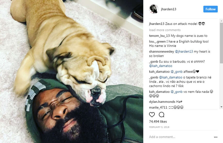 Houston Rockets' James Harden and his dog Zeus. Photo: Instagram