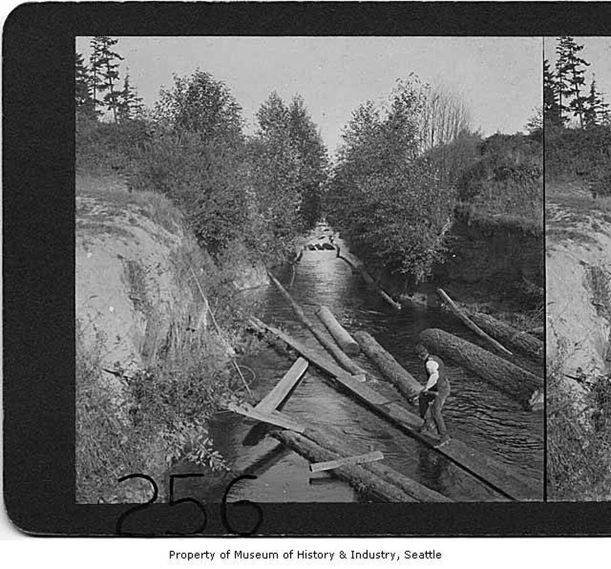 """""""Before the building of the Lake Washington Ship Canal, a small canal connected Lake Washington with Lake Union's Portage Bay. This photo shows a man guiding logs down the canal in the Montlake area."""" -MOHAI. Photo circa 1908. Photo courtesy MOHAI, Frank M. Harwood Stereographs, image number 1974.5868.256."""