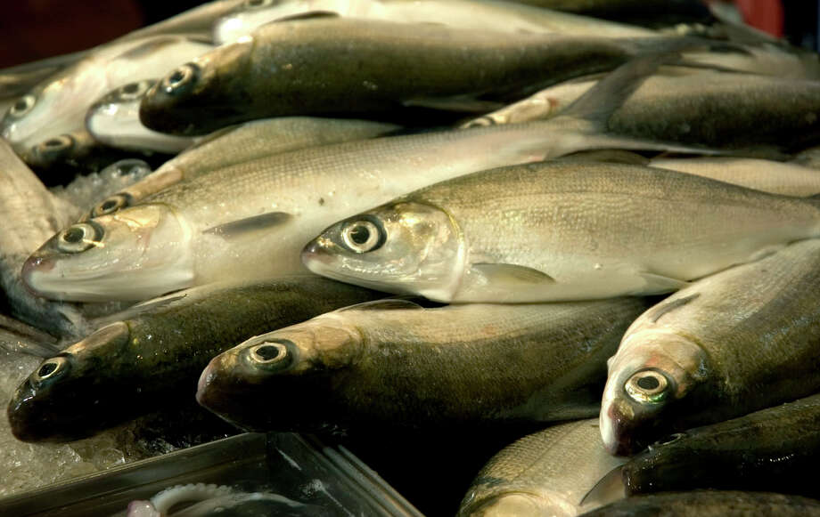 While catch shares are still the darling of some fisheries economists, there is a growing backlash against this management tool worldwide for a variety of reasons. ( Photo courtesy of iStock/Thinkstock) Photo: Contributed Photo / New Canaan News