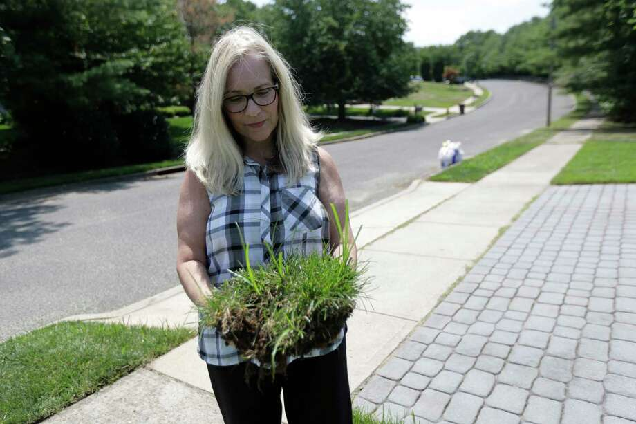 In this Wednesday, July 5, 2017, photo, Judy Rutan holds a section of grass that was dug up by surveyors on her front yard, at her home in Eatontown, N.J. Jared Kushner's family real estate company, which is trying to expand a mall and build an apartment complex in Eatontown, is being sued. Some residents are upset because the complex encroaches onto their backyards and it will bring unwanted traffic and noise to the town. The plaintiffs claim Kushner Cos. is getting special treatment as the project has sped through the approval process. (AP Photo/Julio Cortez) Photo: Julio Cortez, STF / Copyright 2017 The Associated Press. All rights reserved.