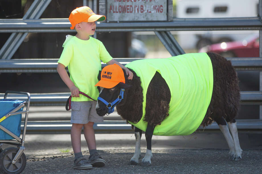 Finn Ottele, 5, and his sheep Snoozia Tutu wear matching hats and shirts for the goat-owner lookalike competition during New Moon Farm's Goatalympics at the Evergreen State Fairgrounds in Monroe on  Saturday, July 8, 2017. Photo: GRANT HINDSLEY, SEATTLEPI.COM / SEATTLEPI.COM