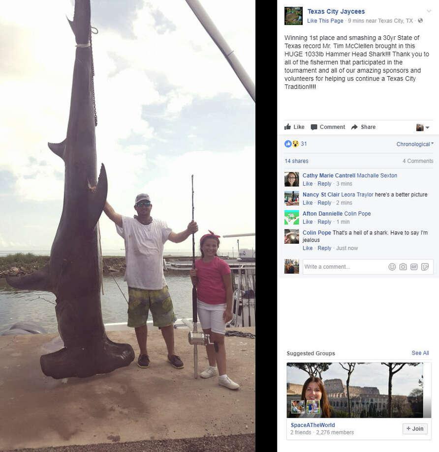 Gulf of mexico fishing record breaking hammerhead shark for Texas city fishing