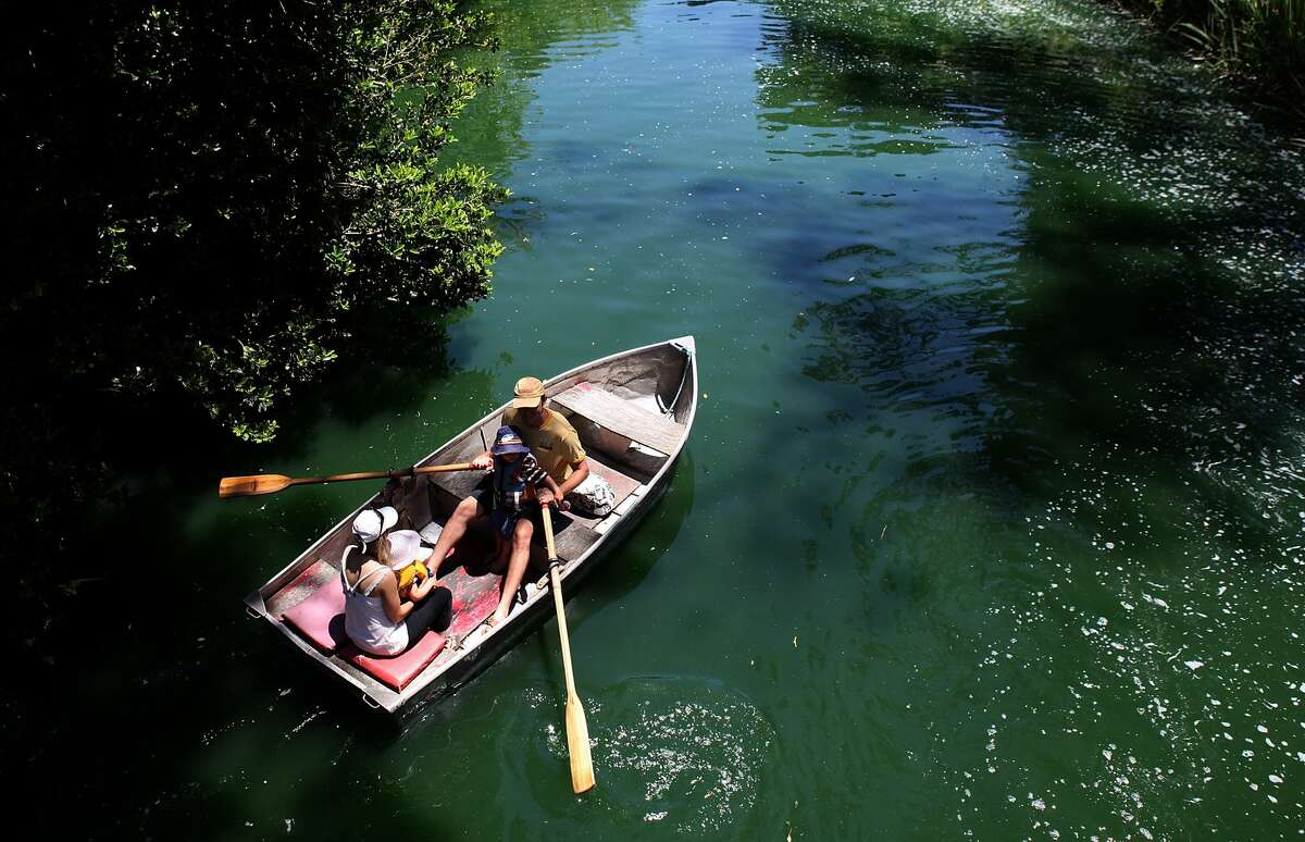 GALLERY:Things we love about Golden Gate Park Paddle the waters of the park's largest manmade lake and float by cascading Huntington Falls and around Strawberry Hill, a mini island rising from the middle. You can rent rowboats and paddle boats by the hour.